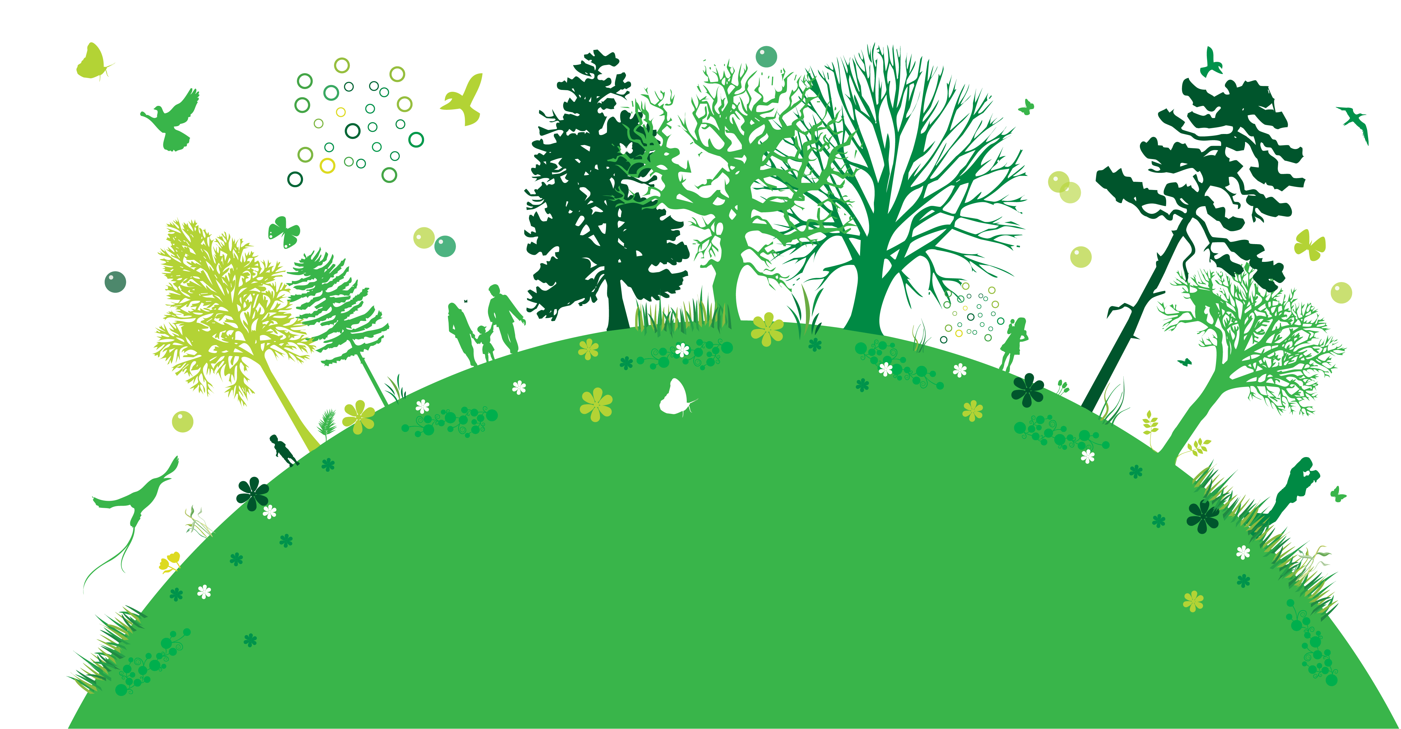 Go-Green-35-Forest.imdex20620.png